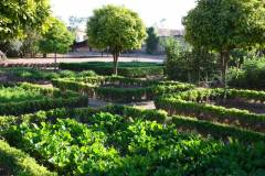 small-2-the-vegetable-garden